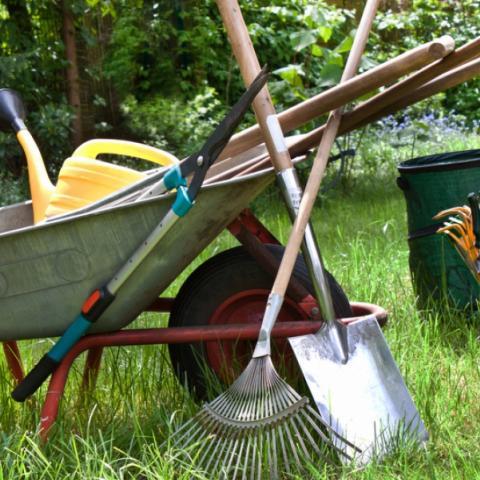 DCEV, gestion reseaux sociaux pour les horticultureurs, maraichers, pépiniéristes & commerces en jardinage
