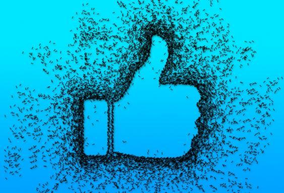 Réseaux sociaux : comment obtenir plus de fans